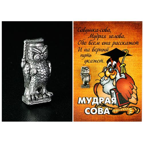 Кошельковый Оберег серебро  Мудрая Сова- оберег для учащихся