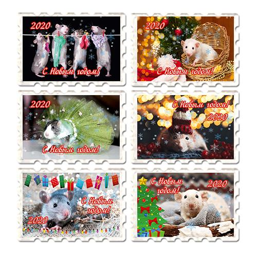 Набор Акриловых магнитов Новый год 2020- год Крысы 6шт